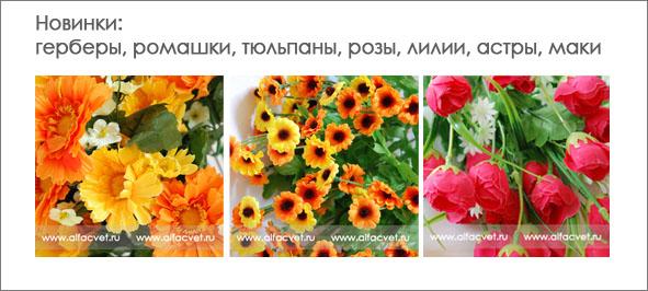 Нижний новгород цветы по оптовым ценам